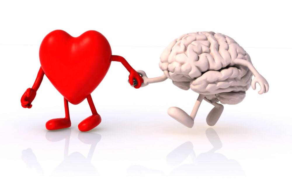 Herz und Verstand Hand in Hand